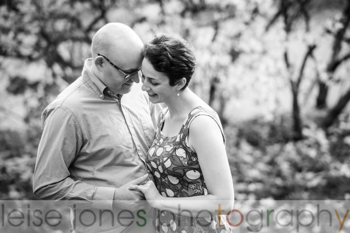 engagement photos arnold arboretum boston